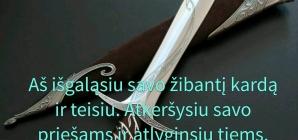 Pakartoto įstatymo 32:41 LTB