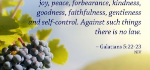 Galatams 5:22-23